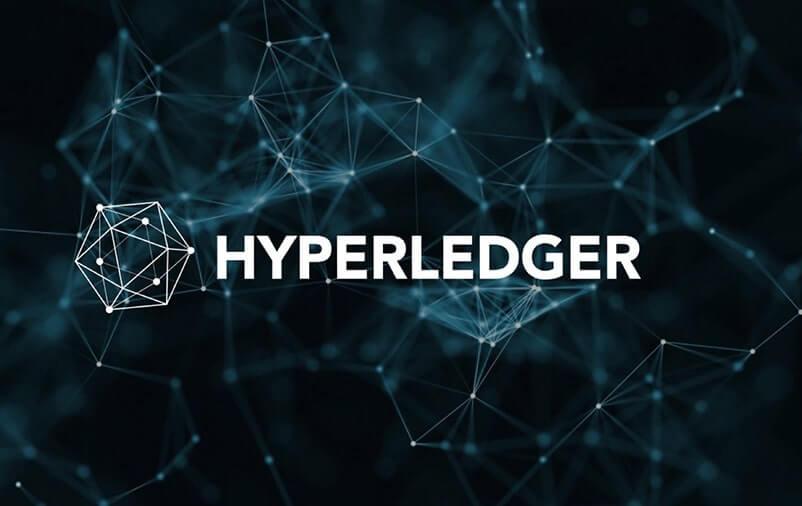 Hyperledger Variants